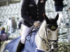Oliver Townend &Ballaghmor Class © Equigram